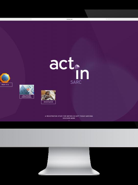 ActInSarc Webapp Design